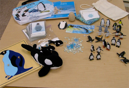 Montessori Continent Box Swap - Arctic/Antarctica