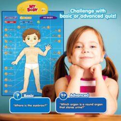 Top 10 Toys that Teach Anatomy